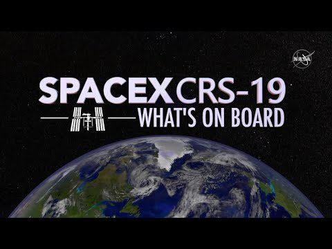 What Launches to Space On SpaceX's 19th Cargo Mission?