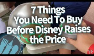 7 Things You Need To Buy Before Disney Raises the Price