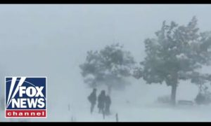 Fox News Report: Powerful winter storm causes chaos with holiday travel