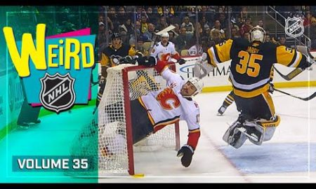 Thanksgiving Leftovers   Weird NHL Vol. 35