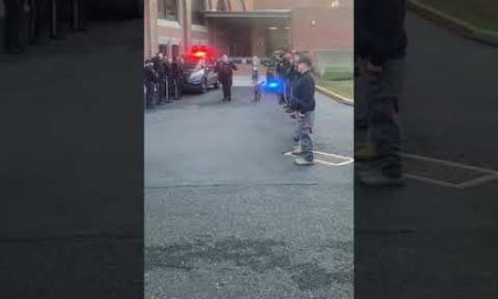 NJ.com Report: Sheriff's department K-9 with terminal cancer gets heartfelt sendoff on last day