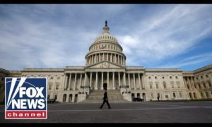 Fox News Report: Scalise reacts to the division on Capitol Hill over US airstrikes