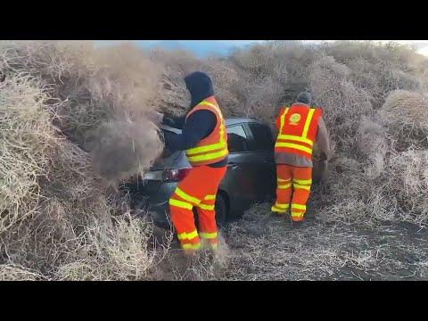 AP: Tumbleweeds trap cars, trucks in rural Washington